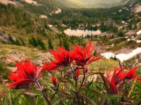 Marmot Lake Basin-Andrew Klaus