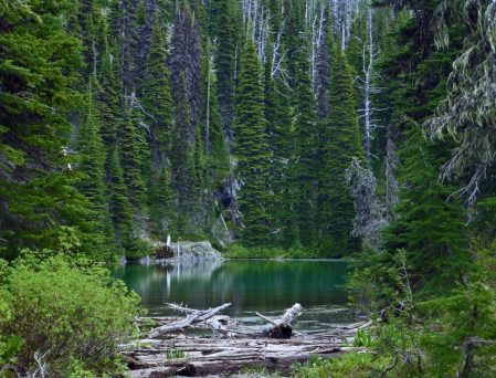Winniemuck Lake-Andrew Klaus