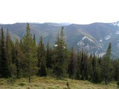 DeepCreekHeadwaters